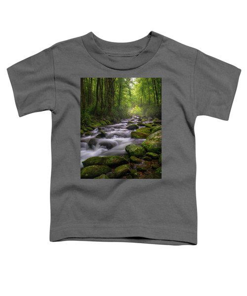 Great Smoky Mountains Gatlinburg Tennessee Toddler T-Shirt