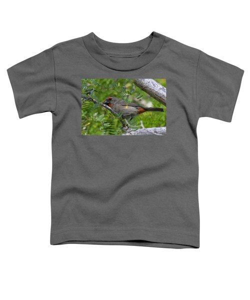 Greater Antillean Bullfinch Toddler T-Shirt