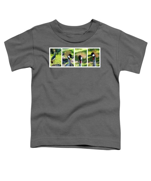 Grey Crowned Crane Gulf Shores Al Collage 1 Toddler T-Shirt