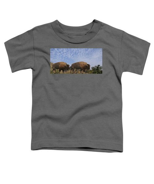 Group Of Bison Walking Against Rocky Mountains  Toddler T-Shirt