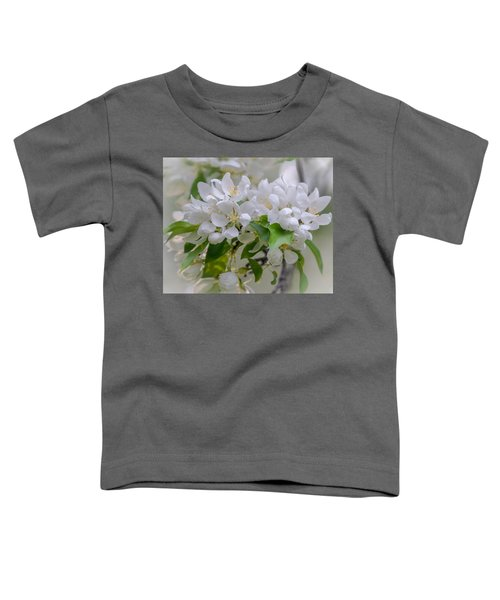 Heavenly Blossoms Toddler T-Shirt