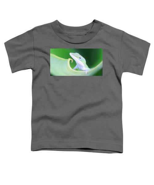 Hello, Anole. 2 Toddler T-Shirt