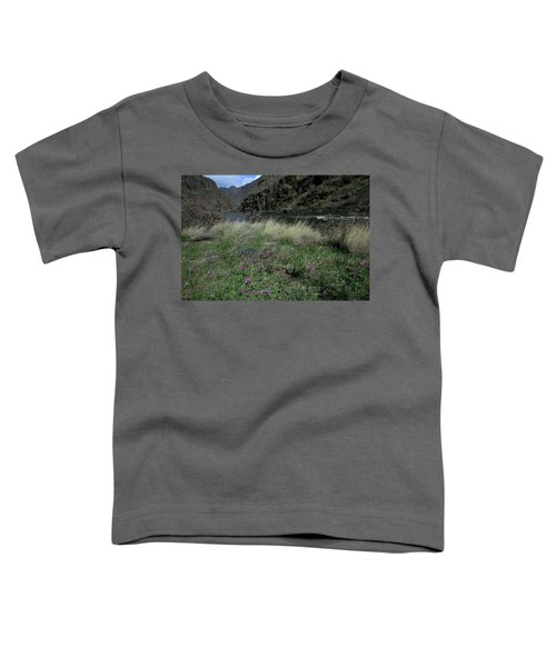 Hells Canyon National Recreation Area Toddler T-Shirt