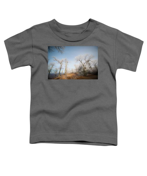 Hilltop Hoarfrost Toddler T-Shirt