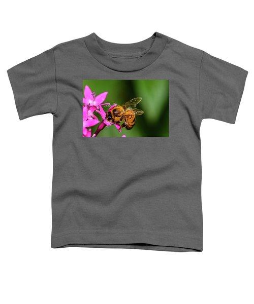 Honey Bee Toddler T-Shirt
