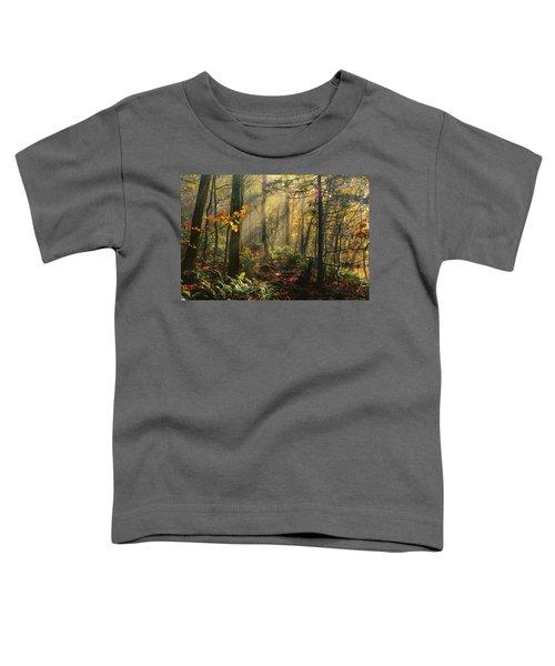 Horizontal Rays Of Sun After A Storm Toddler T-Shirt