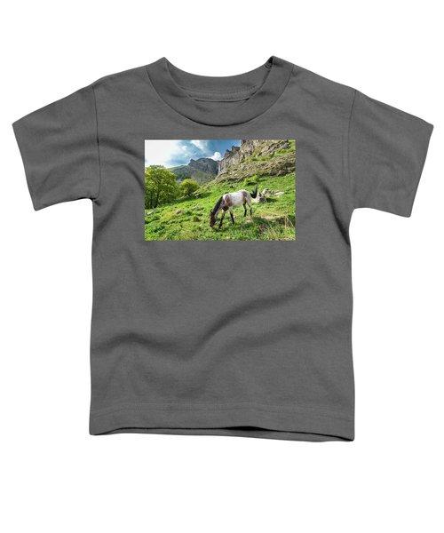 Horse On Balkan Mountain Toddler T-Shirt