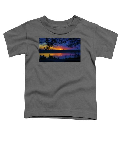 In The Blink Of An Eye Toddler T-Shirt