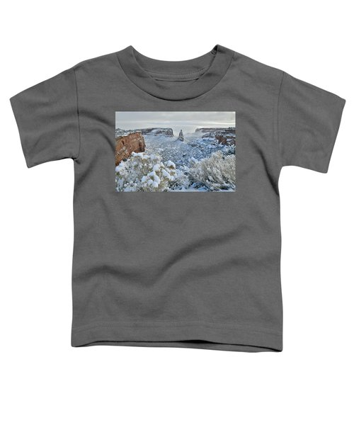 Independence Monument In Snow Toddler T-Shirt