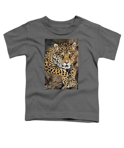 Jaguar Portrait Wildlife Rescue Toddler T-Shirt