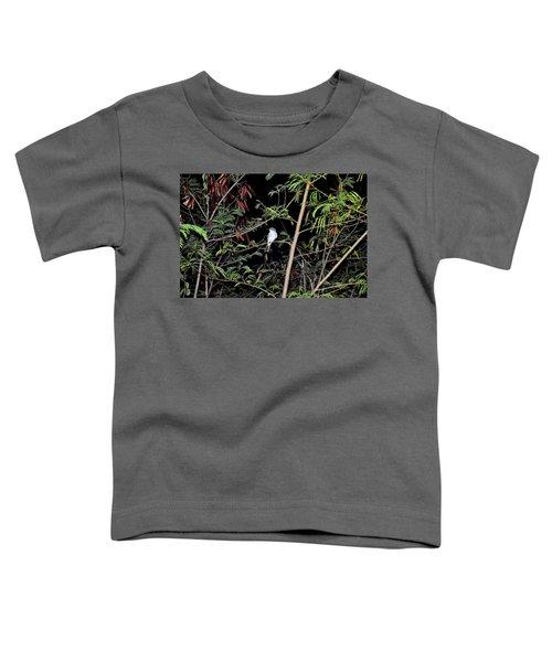 Kingbird At Night Toddler T-Shirt