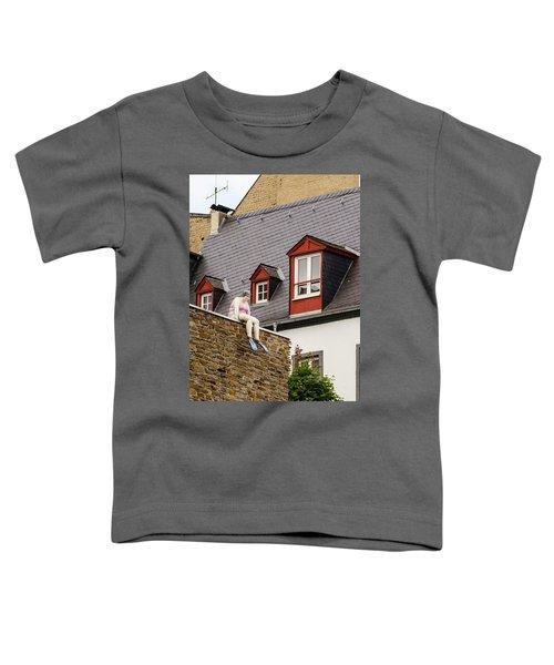 Koblenz Whimsy Toddler T-Shirt