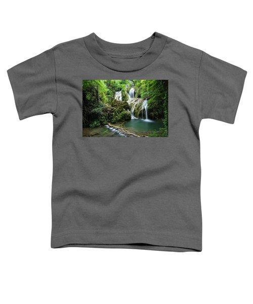Krushunski Waterfalls Toddler T-Shirt