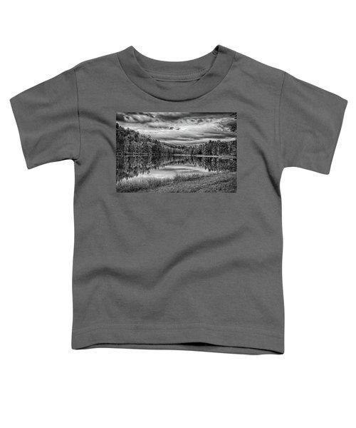 Lake Effect Toddler T-Shirt