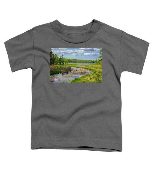 Lake Itasca Beauty Toddler T-Shirt