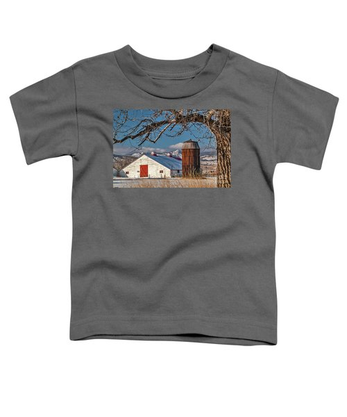 Large White Barn With Silo Toddler T-Shirt