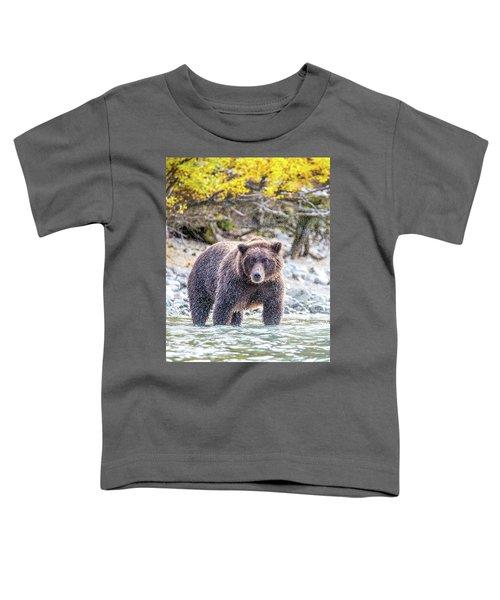 Lazy C 2  Toddler T-Shirt
