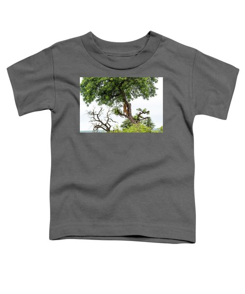 Leopard Descending A Tree Toddler T-Shirt