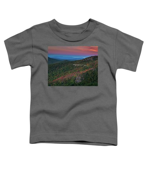 Linn Cove Pink And Blue Toddler T-Shirt