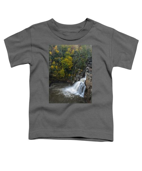 Linville Falls Toddler T-Shirt