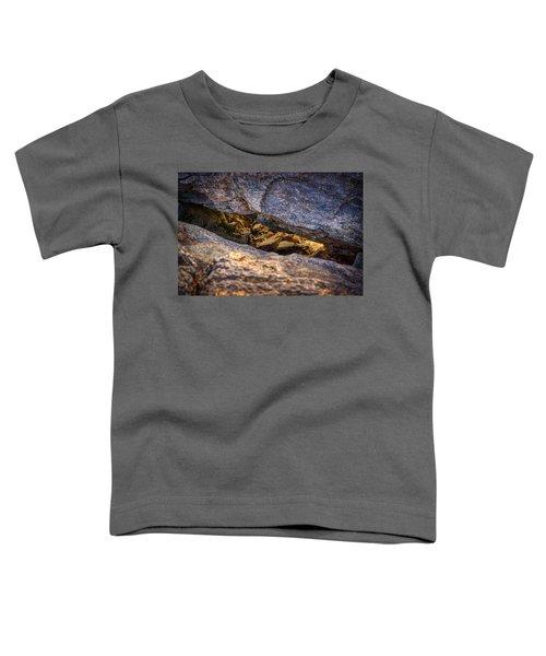 Lit Rock Toddler T-Shirt