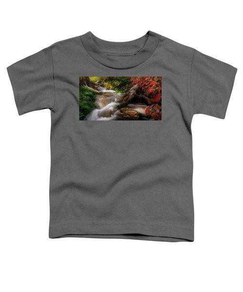 Little Deer Creek Autumn Toddler T-Shirt