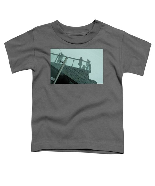 Looking Glass Toddler T-Shirt