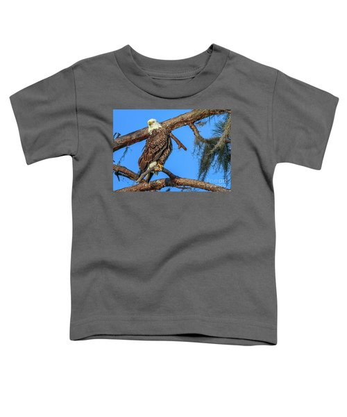 Lookout Eagle Toddler T-Shirt