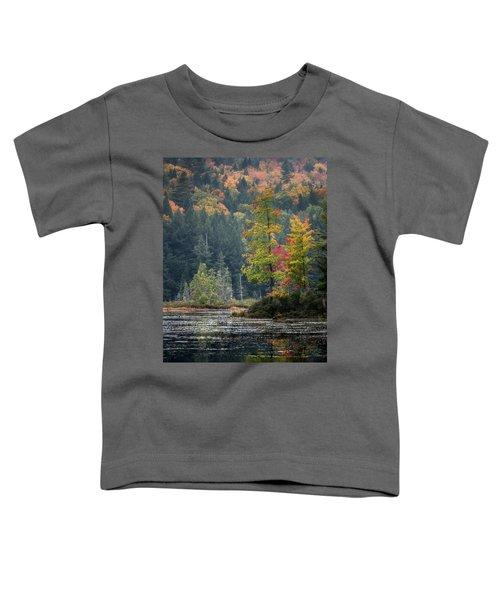 Loon Lake Toddler T-Shirt
