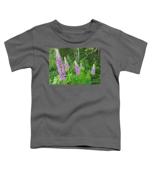 Lupins Toddler T-Shirt