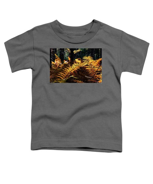 Maine Autumn Ferns Toddler T-Shirt