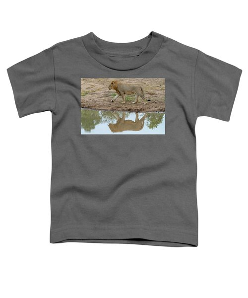 Male Lion And His Reflection Toddler T-Shirt