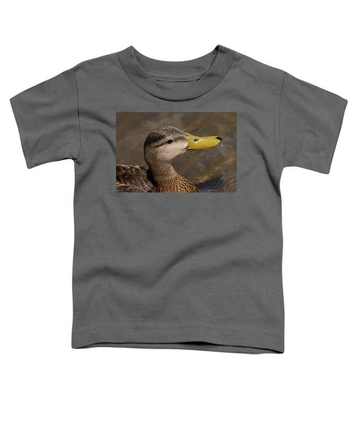 Male Mottled Duck Portrait Toddler T-Shirt