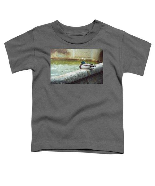 Mallard Resting On The Fountain Of The Fallen Angel In The Retiro Park - Madrid, Spain Toddler T-Shirt