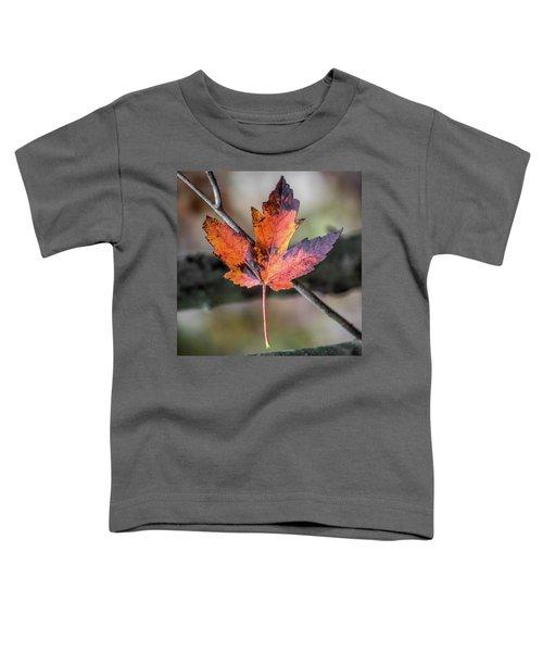 Maple 1 Toddler T-Shirt