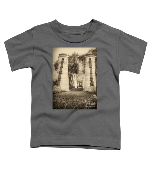 Medieval Bridge Toddler T-Shirt