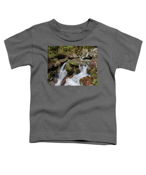 Medium Cascade Toddler T-Shirt