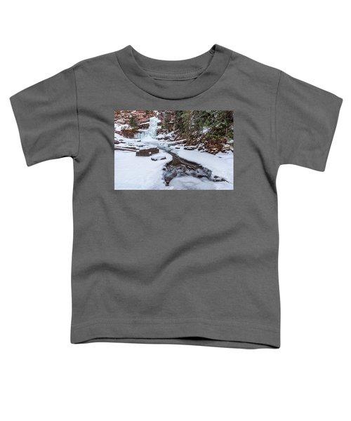 Mermaid's Tail Toddler T-Shirt