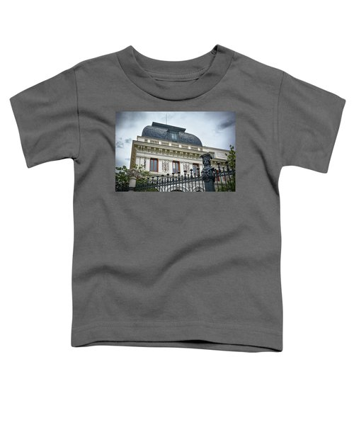 Ministry Of Agriculture Building Of Madrid Toddler T-Shirt