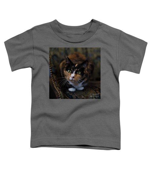 Mischa Toddler T-Shirt