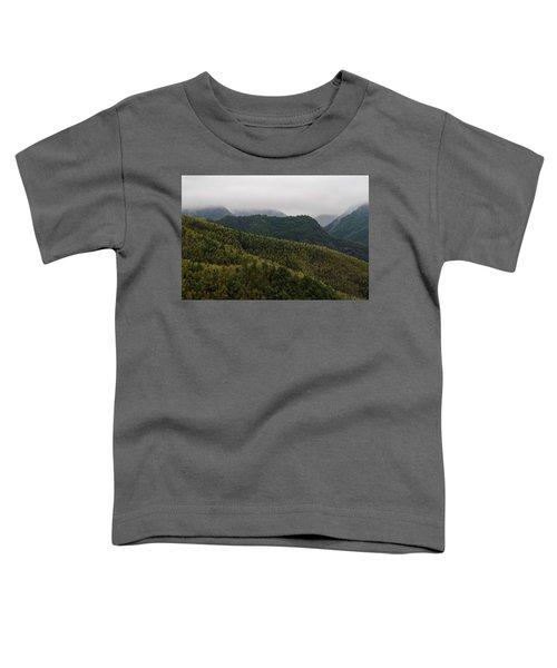 Misty Mountains I Toddler T-Shirt