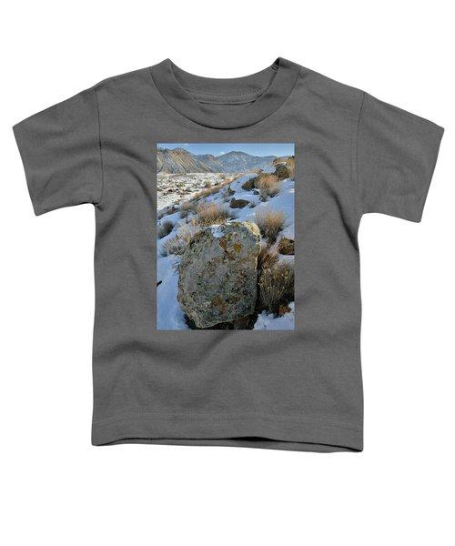 Morning At The Book Cliffs Toddler T-Shirt