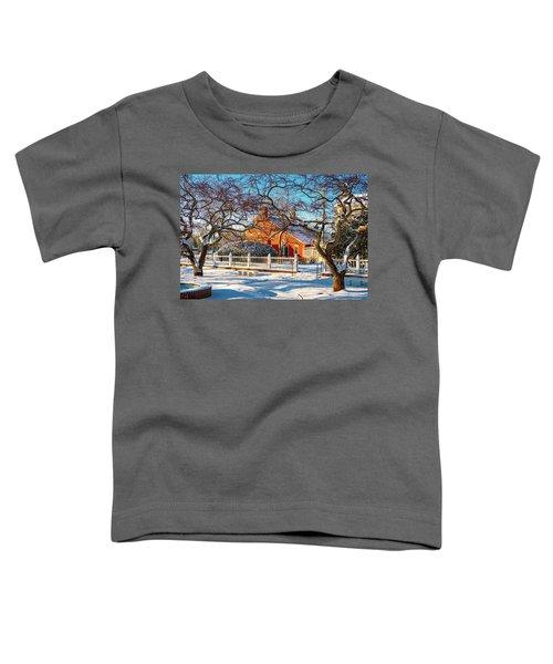 Morning Light, Winter Garden. Toddler T-Shirt