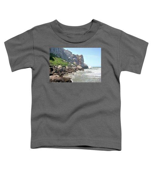 Morro Rock And Ocean Toddler T-Shirt