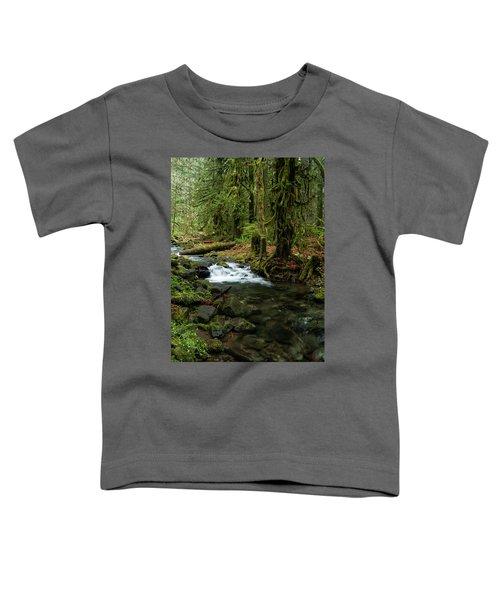 Mossy Cascade Toddler T-Shirt
