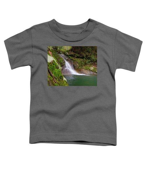 Mountain Waterfall II Toddler T-Shirt