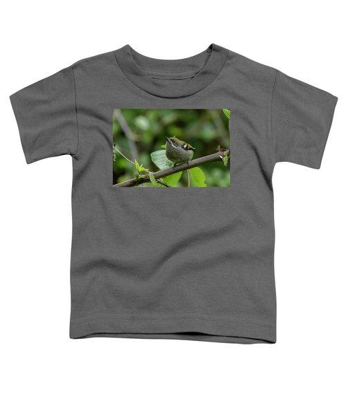 Moustached Tinkerbird Toddler T-Shirt