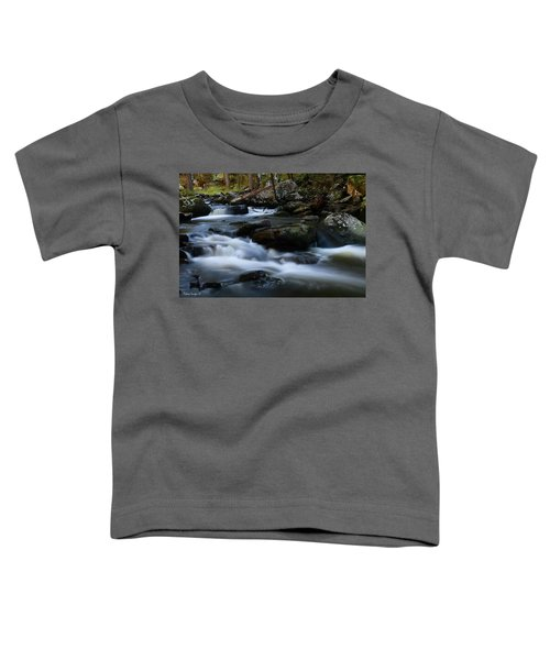 Movement Toddler T-Shirt