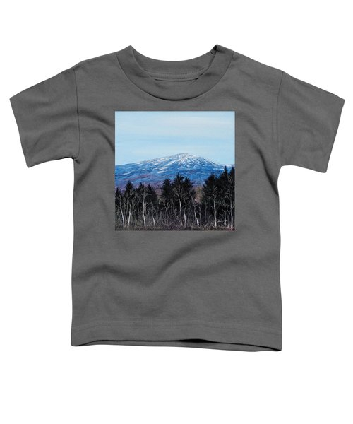 Mt. Monadnock Spring Snow Toddler T-Shirt