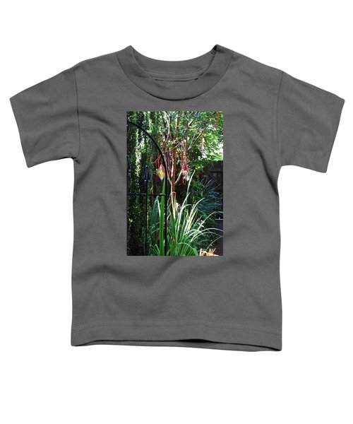 Mystery Fence Toddler T-Shirt